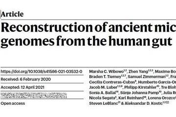 仔细检查了千年前古人留下的8坨粪便这群科学家发现了啥